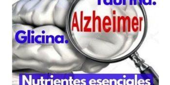 ALZHEIMER: ¿Podemos mejorar con una Nutrición especializada?