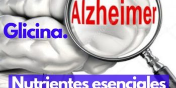 ALZHEIMER: Como mejorar con una buena Nutrición.