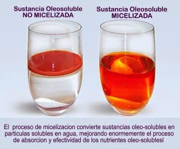 Micelización para la optima absorción de nutrientes