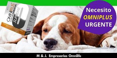 omniplus para mascotas