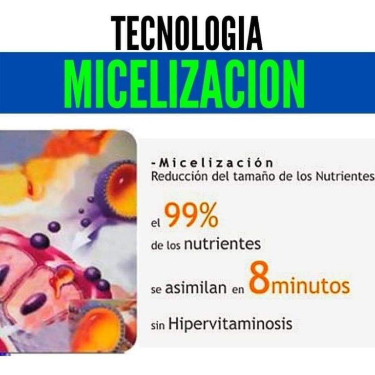 micelización
